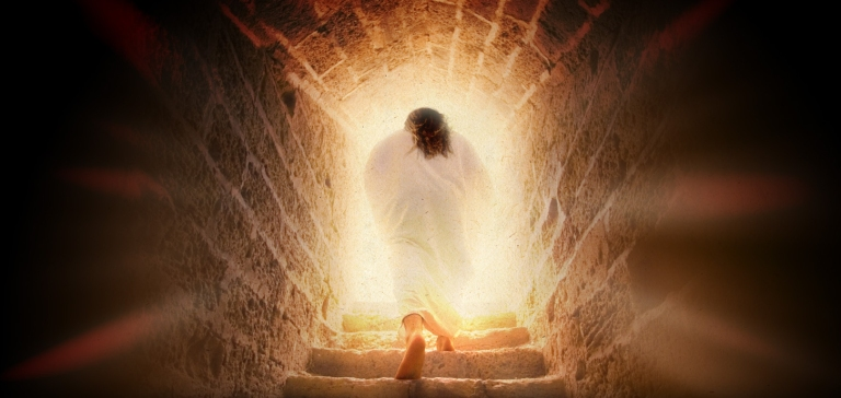 seeing the risen christ_t_nt